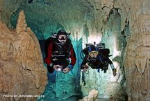 GREAT PHOTOS OF THE UNDERWATER CAVES / Underwater Photos in the Riviera Maya of Mexico's Caribbean coast.