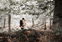 Mariages en forêt