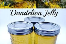 shop jellies