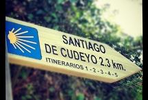 Camino del Norte / Camino de Santiago por la costa. Sus fotos de peregrinajes a Santiago