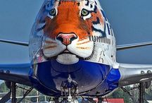Commercial Planes and Tail Art
