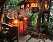 Architecture - Treehouses