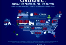 Some results of organic consumption thanks to OTA
