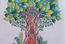 #enchantedforest #secretgarden