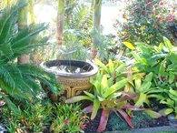 Bali garden ideas