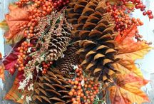 Pinecone  projects / by Donya Ault
