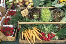 NZ Farmers Markets