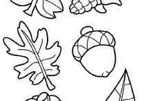 őszi színezők