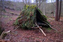 huttes épicéa