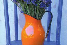 Bunga / Biru didalam vas orange