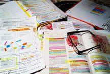 Study Galore