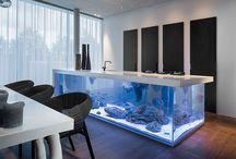 Cool Modern Kitchen Ideas