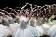 Carol-Anne Millar / by Birmingham Royal Ballet