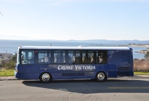 Cool Motorcoaches / Look at these cool motorcoaches. Are they right for your next group tour?  / by Group Tour Magazine
