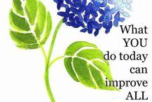 Inspirstion