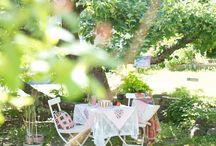 sommer i hagen  / alt fra sommerpyntede bord... blomsterarrangemang... fine blder til inspirasjon osv...