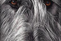 wolfee's