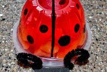 Ladybug  8 anos