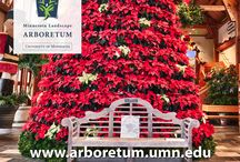 Special Exhibits & Events at the Arb / The Arboretum celebrates all the seasons! Come see us in the winter for holiday celebrations and keep up with all of our events!