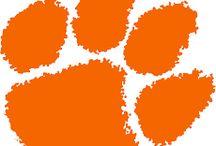 Clemson Tigers 2016 CFP Champ