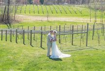 LaBelle Winery Weddings / LaBelle Winery, Amherst NH Wedding photography and video