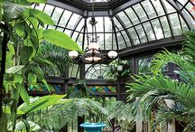Conservatory/Sunrooms / Inside beauty and relaxation