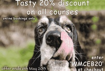 Dog training courses - special offers / This board will display special deals for our dog training courses, one-2-ones or up and coming competitions