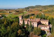 Vini | Wines / Castello di Spessa produce anche vini conosciuti a livello mondiale