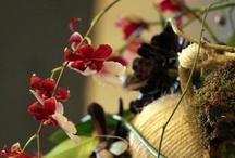 idées art floral