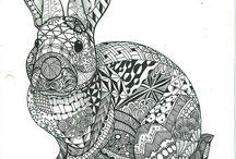 omalovánky králíci