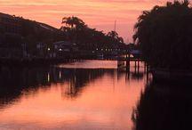 Florida Views