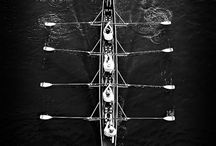 Aviron / Rowing