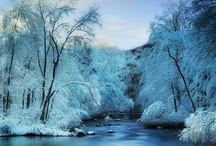 winter landscape / by Ron Moyers