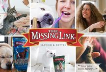 The Missing Link for Dogs and Cats