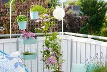 >>garden<<
