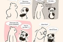 About Panda and Polar Bear
