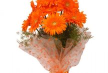 Buy Orange Colour Flowers Online and Send it to Anywhere in India / FlowersCakesOnline Team Launches Android App for all gifting needs such as flowers, cake and other products. When you send flowers to India, or order exotic flowers for someone residing in the next city you no longer to buy a birthday cake or chocolates from your local bakery. You just need to download the newly launched FlowersCakesOnline app and Celebrate all special days in Your Style.