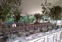 Wedding: Un Bosque En el Jardín
