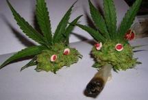 weed / by Rhodri Jones