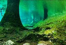 Green Lake In Austria