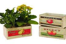 Wood Boxes & Crates / These wholesale wood boxes and crates are perfect for flower/plant arrangements, as well gift containers for a variety of other products!