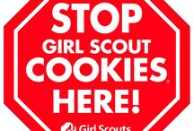 Girl Scouts / by olivia crane