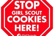 Girl Scouts / by Melanie Morgan