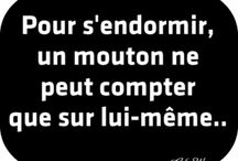 Humour & humour noir