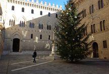Beautiful Siena / Images of Siena