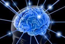 The Brain/Mental Health