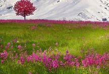 Switzerland Places to Visit