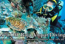 Diving / Our top pick of diving destinations and pictures from around the world, as well as some of our own images and promotions.