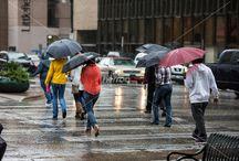 Rainy day in Austin, Texas