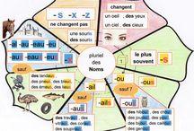 Orthographe / Le pluriel des noms